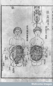 日本医史学会月例会